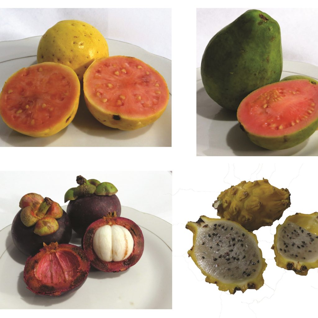 Fruits to eat in Colombia